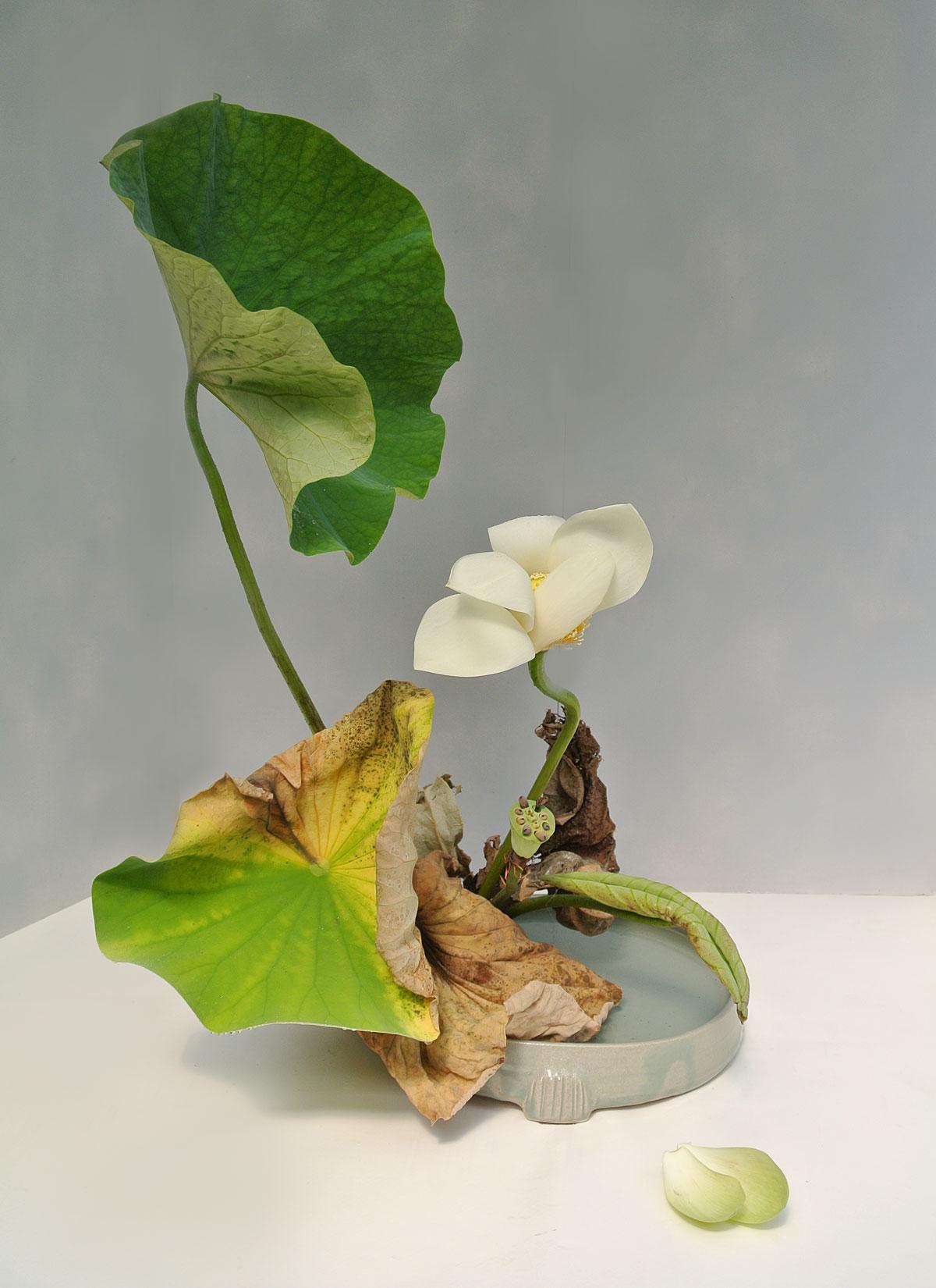Boel Lindbergh. Ikebana Ohara. Bunjin moribana