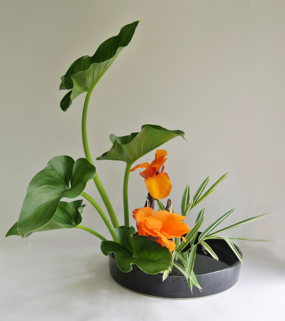 moribana_upright_2012